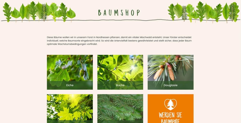 Baumpate website by BrandGarden